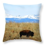 Buffalo And The Rocky Mountains Throw Pillow