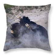 Buffalo Bath   #7218 Throw Pillow