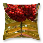 Buffalo Berries Throw Pillow