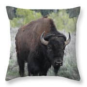 Buffalo Bird Throw Pillow