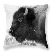 Buffalo Black And White Throw Pillow