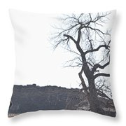 Buffalo Breath In The Winter Air Throw Pillow