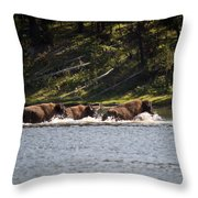 Buffalo Crossing - Yellowstone National Park - Wyoming Throw Pillow