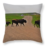 Buffalo Crossing Throw Pillow