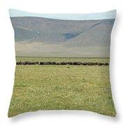 Buffalo Herd Throw Pillow