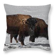 Buffalo In Snow Throw Pillow