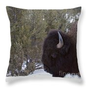 Buffalo In The Mountain   #4169 Throw Pillow