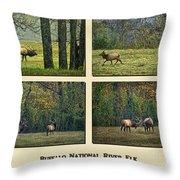 Buffalo National River Elk Throw Pillow