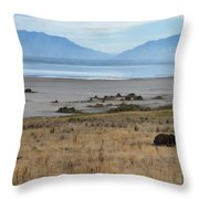 Buffalo Of Antelope Island V Throw Pillow