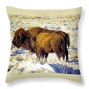 Buffalo Painting Throw Pillow