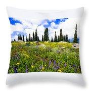 Buffalo Pass Colorado Wildflowers Throw Pillow