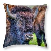 Buffalo Warrior Throw Pillow by Skye Ryan-Evans