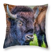 Buffalo Warrior Throw Pillow