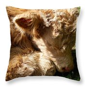 Buffie Throw Pillow
