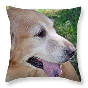 Buffie Throw Pillow