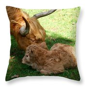 Buffie's First Bath Throw Pillow