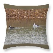 Buffleheads 3 Throw Pillow