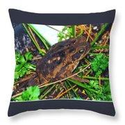 Bufo Toad Throw Pillow