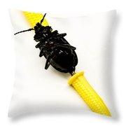 Bug On The Cob Throw Pillow