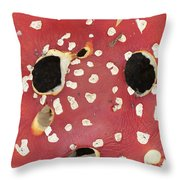 Bugaboo - Amanita Muscaria Throw Pillow