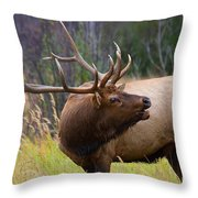 Bugles All Around Throw Pillow