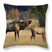 Bugling Elk With Calf Throw Pillow