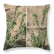 Bugloss Fiddleneck Collage Throw Pillow