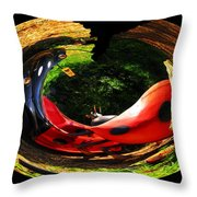 Bugs At The Zoo Lady Bug Throw Pillow