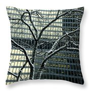 Building Reflection And Tree Throw Pillow