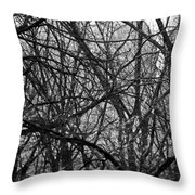 Buildings And Trees Throw Pillow