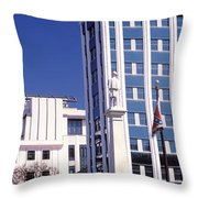 Buildings Viewed From Confederate Throw Pillow