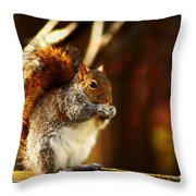 Bulking Up For Winter Throw Pillow