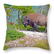Bull Bison Near Mud Volcanoes In Yellowstone National Park-wyoming Throw Pillow