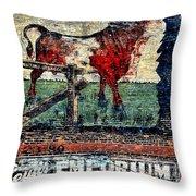 Bull Durham Throw Pillow