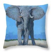 Bull Elephant Throw Pillow