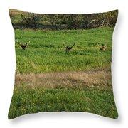 Bull Elk At Dean Creek Throw Pillow