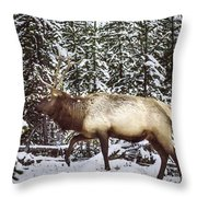 Bull Elk In The Woods Throw Pillow