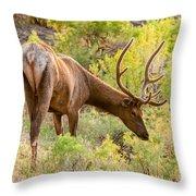 Bull Elk Profile Throw Pillow