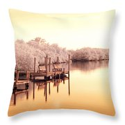 Bull Frog Creek Gibsonton Fl Usa Near Infrared Throw Pillow