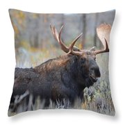 Bull Grunt Throw Pillow