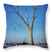 Bull Island South Carolina Throw Pillow