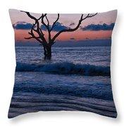Bull Island Sunrise Throw Pillow