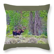 Bull Moose In Gros Ventre Campground In Grand Tetons National Park-wyoming Throw Pillow