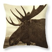 Bull Moose In Sepia Throw Pillow