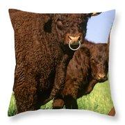 Bull Salers. French Race Throw Pillow by Bernard Jaubert