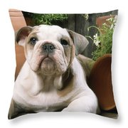 Bulldog Puppy With Flowerpots Throw Pillow