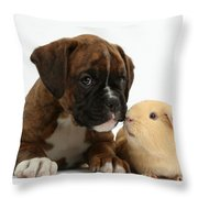 Bulldog Puppy With Yellow Guinea Pig Throw Pillow