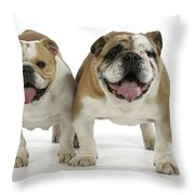 Bulldogs, Male And Female Throw Pillow