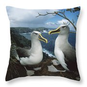 Bullers Albatrosses On Storm-lashed Throw Pillow