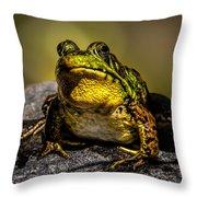 Bullfrog Watching Throw Pillow
